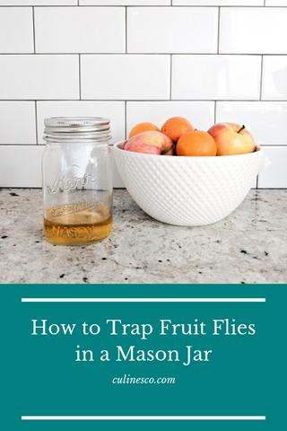 It's easy to get rid of fruit flies with a few simple items. Here's how to trap fruit flies in a mason jar with our innovative product the Ergo Trap™.