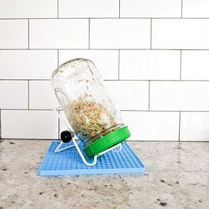 Spouted beans in a mason jar with stand and mat