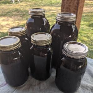 concord grape juice in 6 mason jars